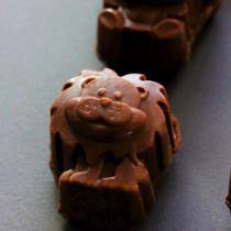 Des Z'Animaux moelleux et croquants au Chocolat